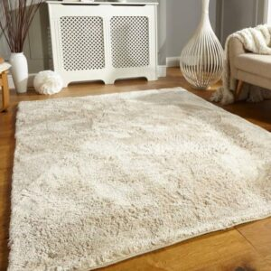 home and office rug